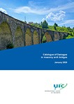 Catalogue of Damages in masonry arch bridges